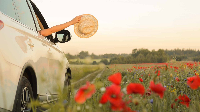 Fitch Autos Brownhills Summer Check